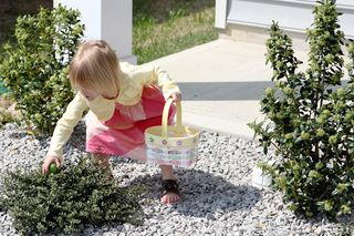 Easter20100001